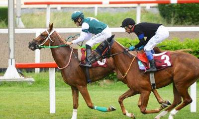 TJK'dan hafta sonu açıklaması! Yarışseverler At yarışı bahislerini e-Bayi'den oynayacak